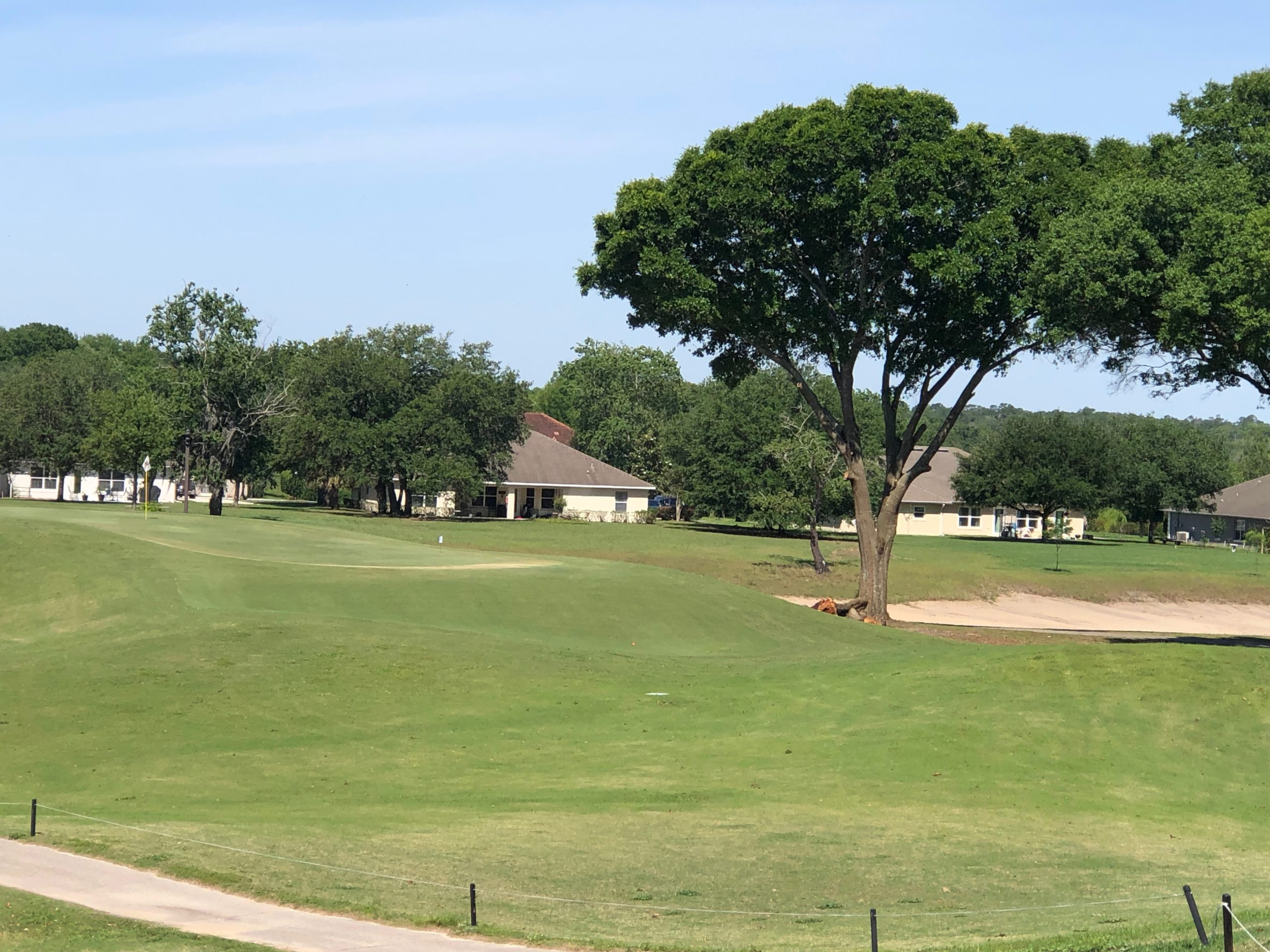 Course Improvements – Tree Trimming